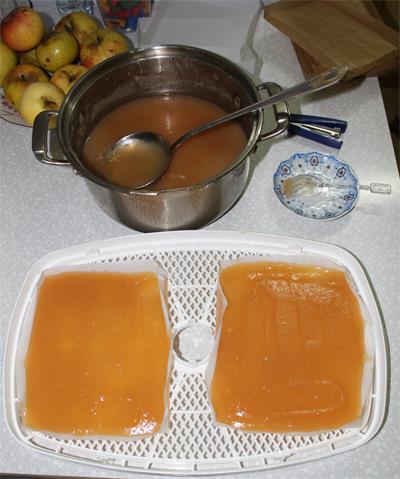 Как сделать пастилу в сушилке для фруктов